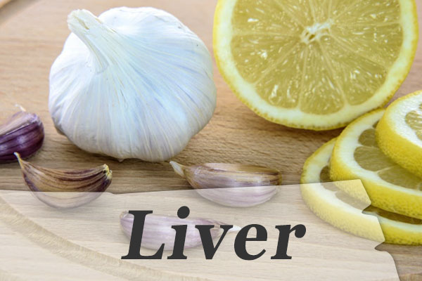 My health store Liver